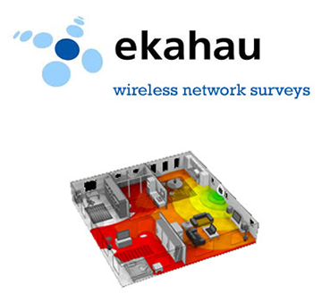wireless surveys
